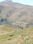 In the shadow of the dam, Lesotho