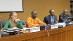 UN side-event on Equatorial Guinea